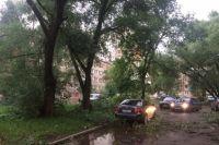 Шквалистый ветер сломал десятки деревьев в городе.