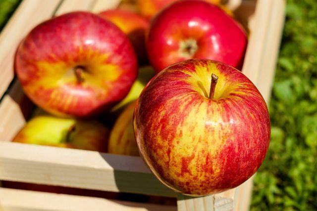 Общий вес фруктов составил 15 кг.