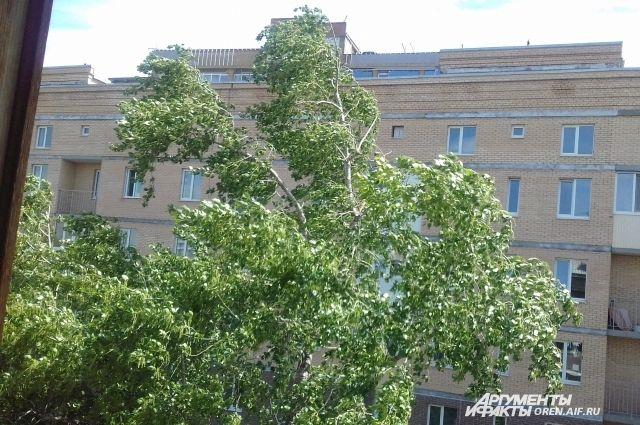 МЧС: в Оренбуржье в первый летний день будет штормовой ветер