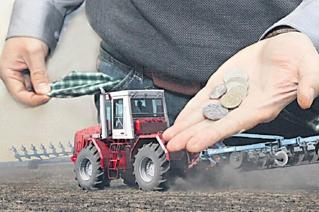 В субсидии фермерам отказывают из-за долгов по налогам, даже если они составляют всего несколько рублей.