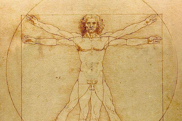 Витрувианский человек Леонардо да Винчи.