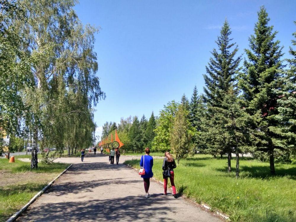 В Барнауле погода радует жителей солнцем и летним теплом, за окном +25.