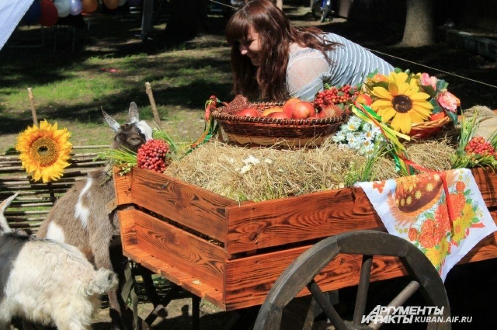 Казачья экспозиция и живые козы, которых ребятня с удовольствием гладила.