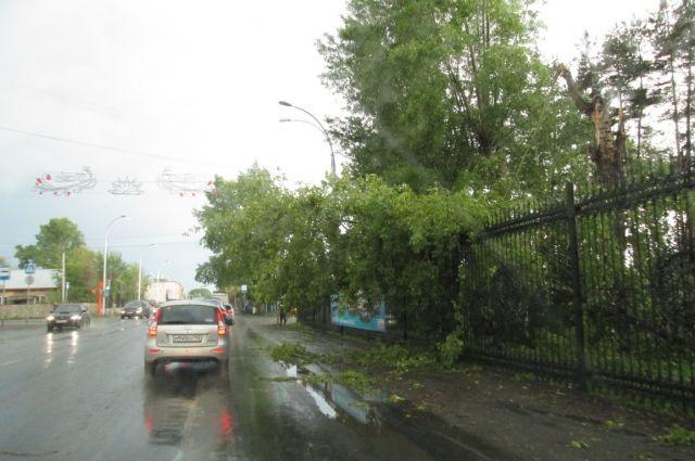 1 июня ураган обрушился на столицу области.