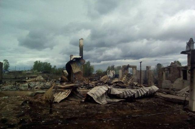 В Канске на месте пожарищ до сих пор находятся погибшие в огне животные.