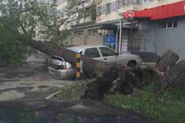 После урагана вЧелябинске проверят все старые деревья ифасады