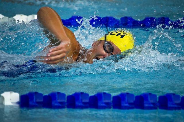 В Кемерове завершились областные соревнования по плаванию.