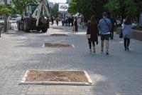 В Ростове рубят здоровые деревья, утверждают специалисты.