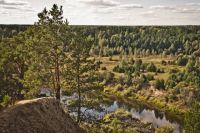 До этого года таёжные леса Омской области не горели.