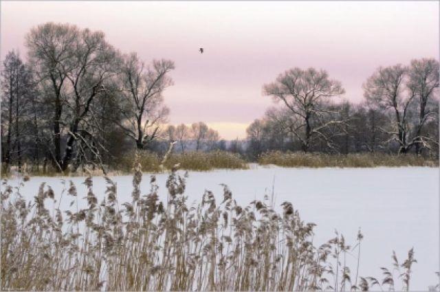 Оренбуржец незаконно ограничил доступ к общественному пруду