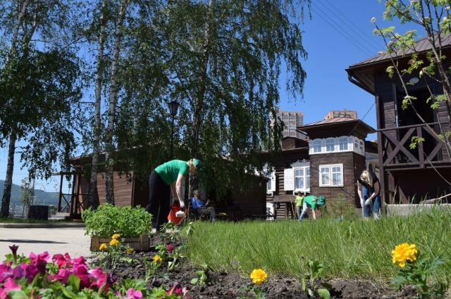 «Цветущие недели» Экомарафона продлятся до 14 июня, за этот период дружинники высадят 13 000 цветов различных видов.