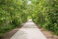 Торжественное открытие аллеи прошло в рамках Года экологии.