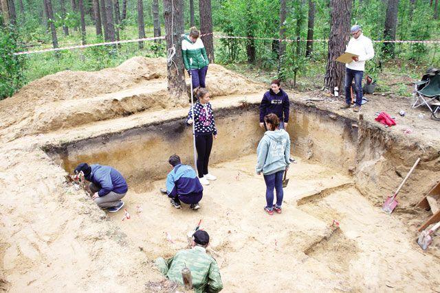 Раскопки ведут аккуратно. Рабочий набор археолога - ланцет, кисточка, совок и нож.
