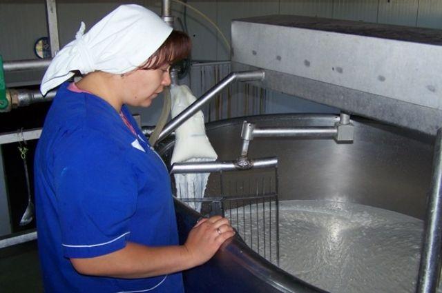 На свалку могли отправиться 16 тонн молока и готовой продукции