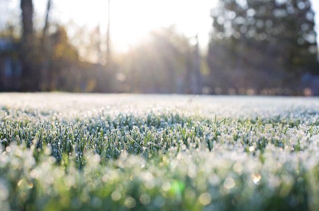 При прояснении 9 июня в Иркутске будет морозно.