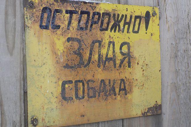 Хозяйка агрессивного питбуля заплатит 75 тыс. покусанной петербурженке