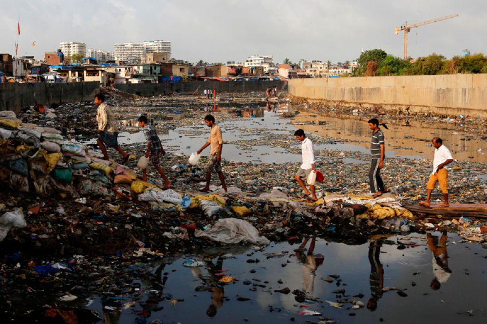 5 июня. Всемирный день окружающей среды в Мумбаи, Индия.