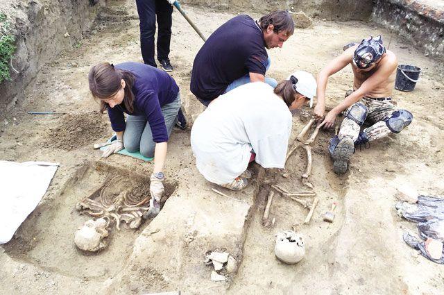 Находка могильника стала буквально подарком для археологов.