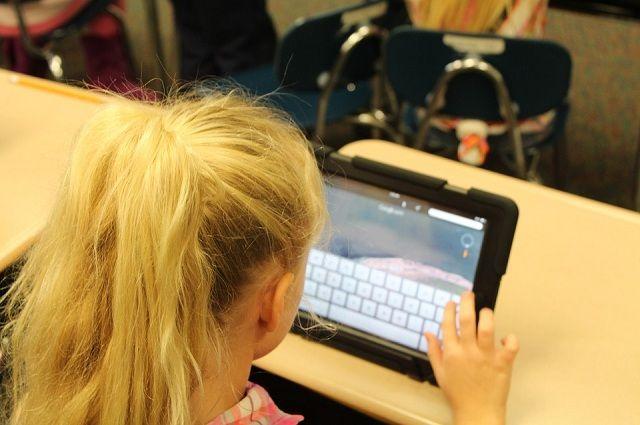 Безопасность школьников в Интернете контролирует тюменский «Киберпатруль»