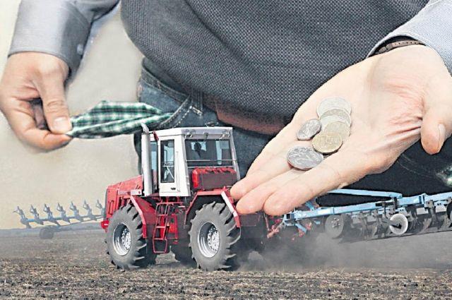 Таким показателям способствует окружная политика поддержки сельскохозяйственных производителей