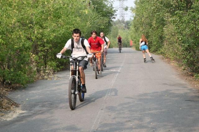 Злые собаки и опасность ездить по тротуарам тревожат велосипедистов Тюмени