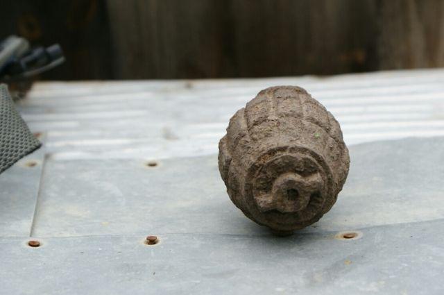 Гражданин  Иркутского района отыскал  боевую гранату усебя вогороде