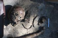 Найденные на месте старого кладбища человеческие останки