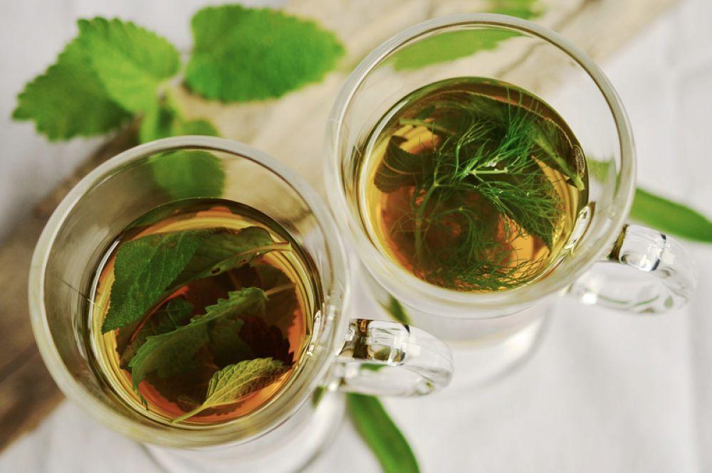 Травяные чаи. Хорошо заваривать листья и плоды лесной земляники, сейчас как раз начинается ее сезон. Полезны также плоды шиповника, листья одуванчика, корневища кровохлебки.