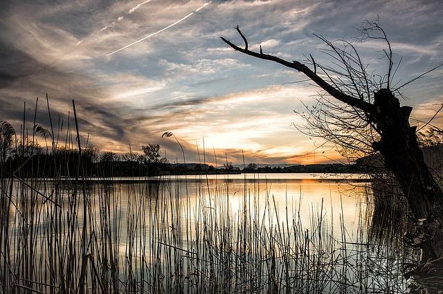 ВОмской области предпринимателю нелегально передали в использование озеро