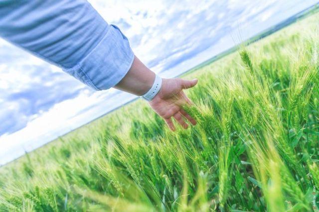В регионе разработаны экологические маршруты, позволяющие познакомиться с природой края.