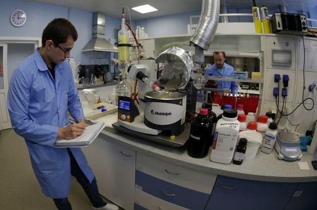 Биологи МГУ протестировали новый антиоксидант, заживляющий раны при диабете