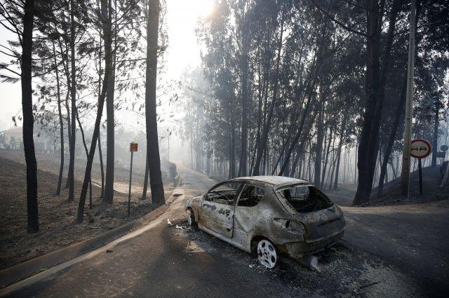 ВПортугалии лесные пожары забрали жизни 19 человек