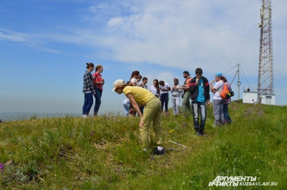 Участники экскурсии встретили много любопытных растений и животных – нашли интересного чёрного жука.
