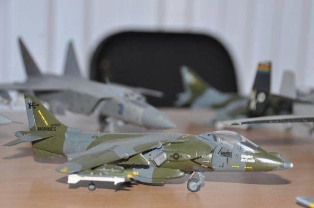 Посетители смогут увидеть почти 100 моделей самолетов и бронетехники.