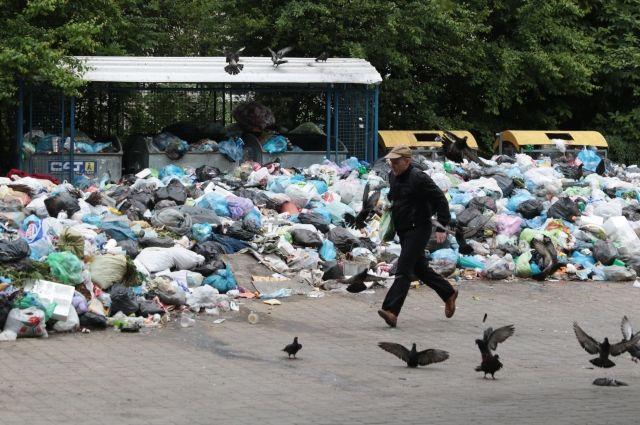 Вице-спикер Рады объявила голодовку из-за «мусорной блокады» Львова