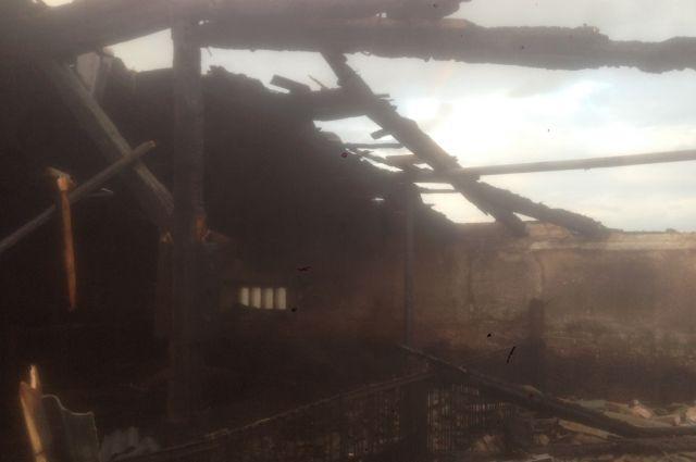 В Беляевском районе на крупном пожаре погибли 12 свиней, 388 спасены
