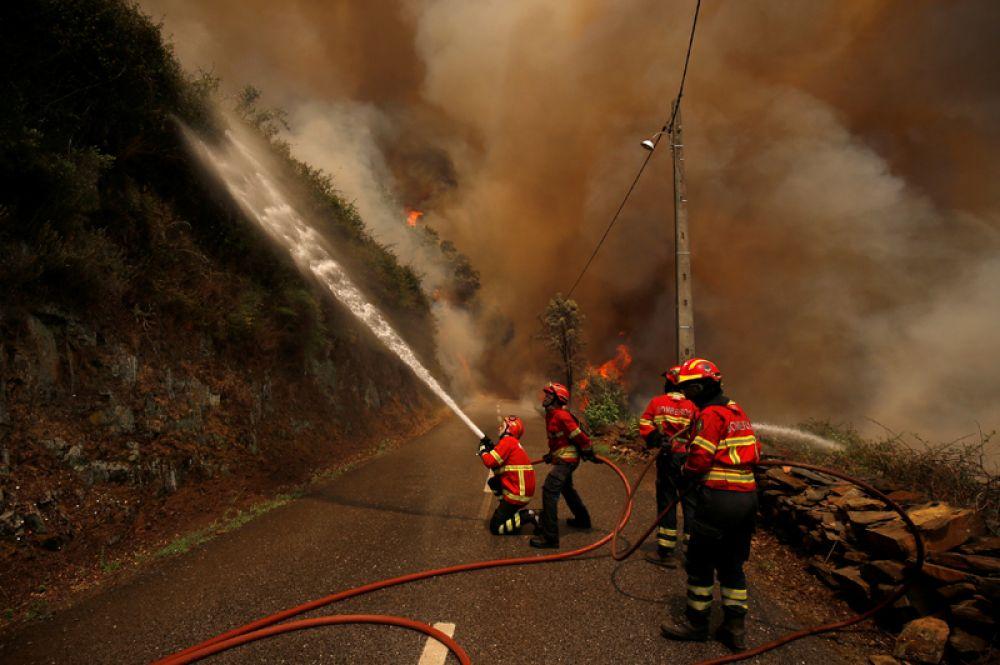 Пожарные пытаются потушить лесной пожар около деревни Сандинья.