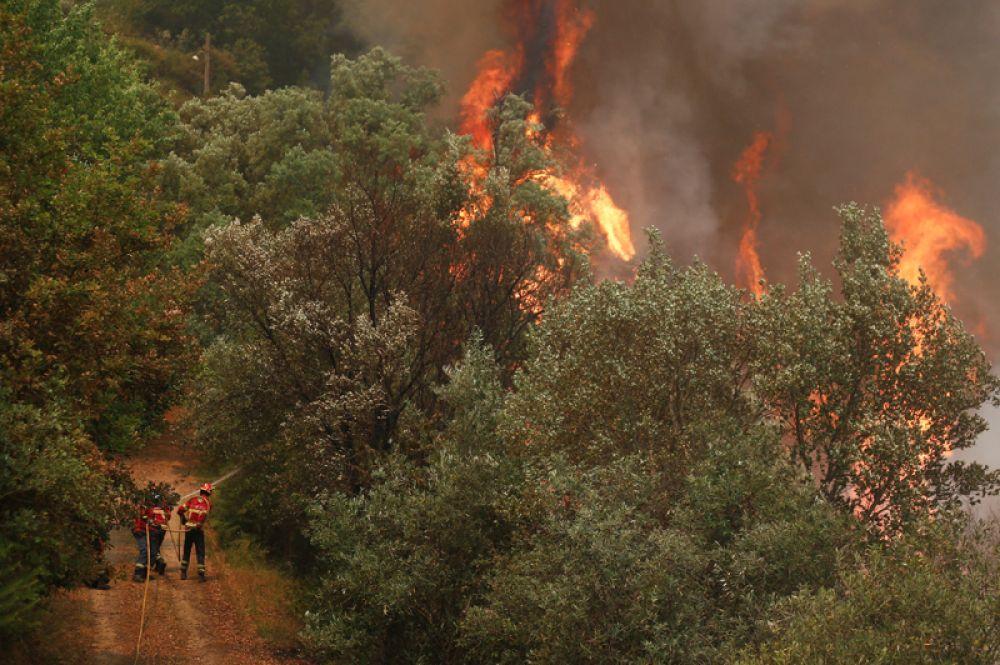Лесные пожары недалеко от деревни Сандинья.