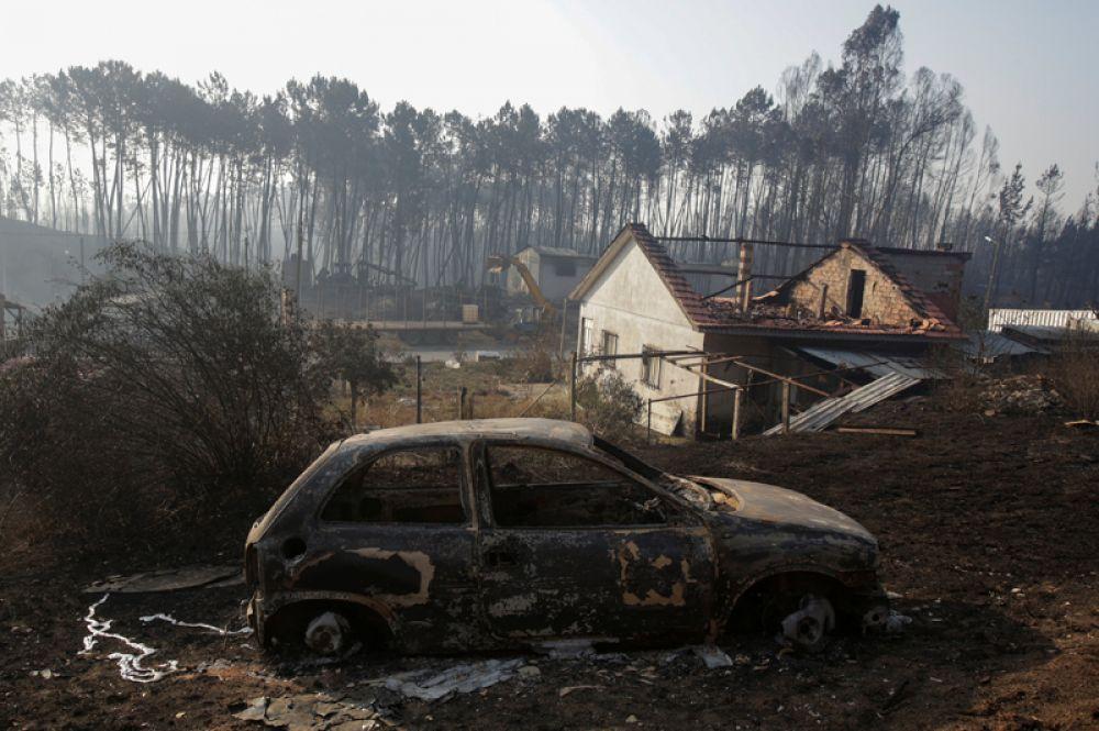 Последствия лесного пожара в Каштаньейра-ди-Пера.