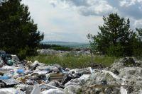 Территория региона зарастает стихийными свалками, пока реформа мусорной отрасли раскачивается.