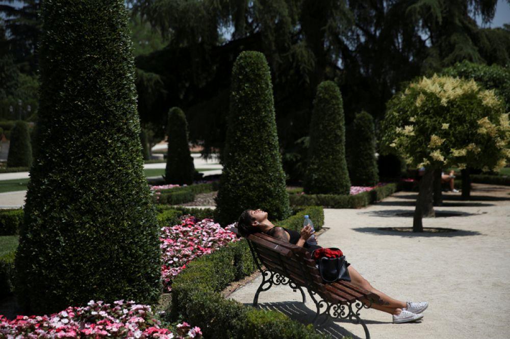 Девушка загорает на скамейке в парке Ретиро. Мадрид, Испания, 21 июня 2017 года.