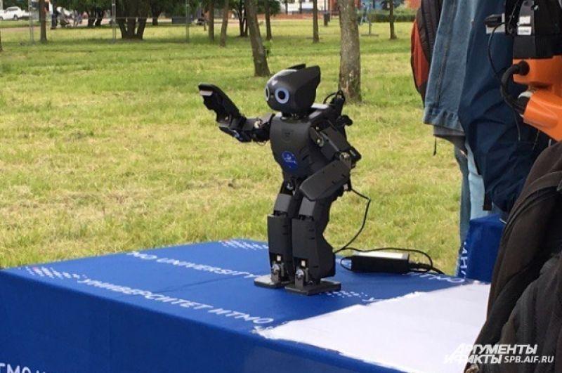 На фестивале были представлены самые разные роботы.