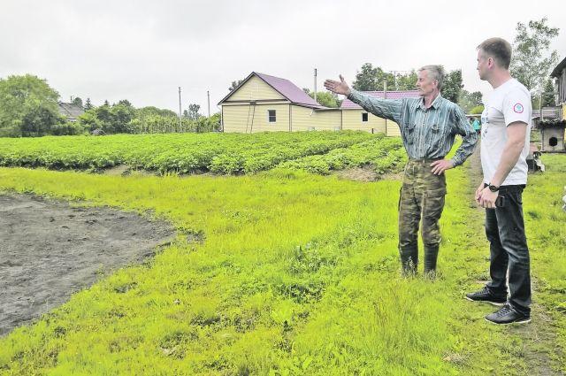 ВХабаровском крае под «дальневосточный гектар» отдали огороды местных граждан