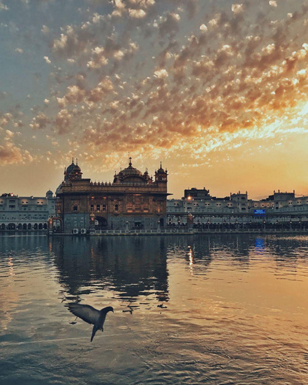 1 место в категории «Закат» — Закат и Золотой храм в Амритсаре, Индия.