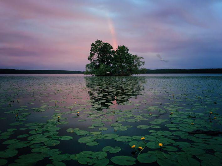 1 место в категории «Природа» — Пейзаж в Сигтуне, Швеция.