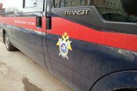 СК проверяет действия полиции в конфликте кузбасского чиновника и дачника.