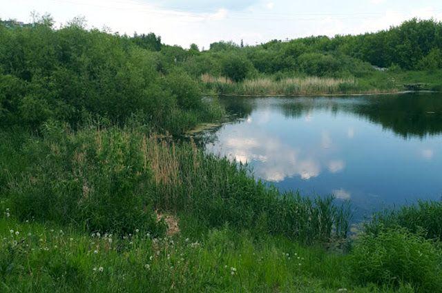 В тюменском поселке Черная речка самовольно перекрыли доступ к озеру