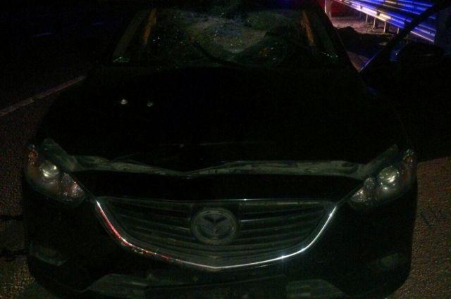 Натрассе вТульской области пешеход умер под колесами авто