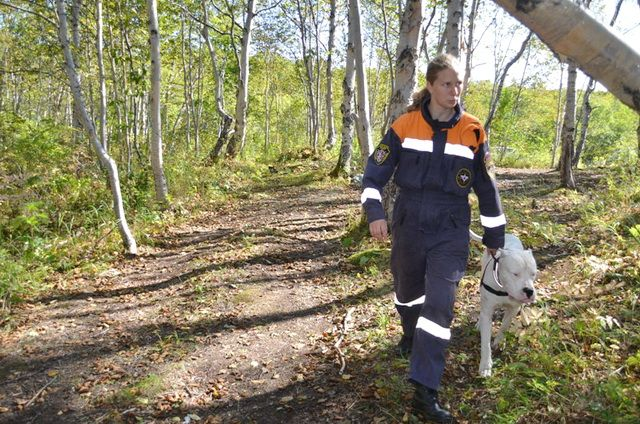 В лесу Свердловской области потерялись несовершеннолетние братья-грибники.