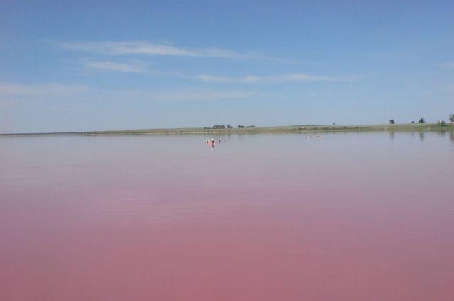 Малиновое озеро в Алтайском крае